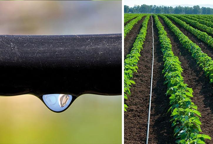 Bewässerungsystem der Marke Holzbrink